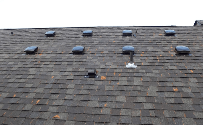 Roof Venting Problems : Roof vent locations chicago house web